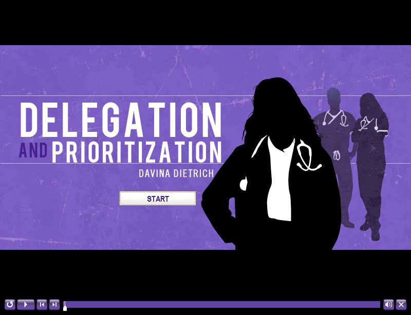 Nursing Delegation Title Slide