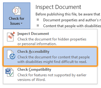 highlighted check accessibility option